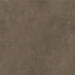 GRES SZKLIWIONY COLIN BROWN 60X60 G1  W713-016-1