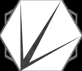 GRES SZKLIWIONY TRIDENT WHITE 220X250 G1 (1,04M2)