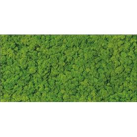 FRESH MOSS GLASS INSERTO 29x59 OD570-006