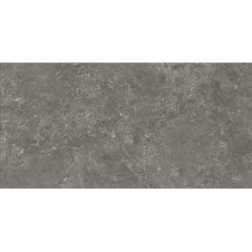 G313 GRAPHITE 29,8X59,8 G1 W835-003-1 (1,6)