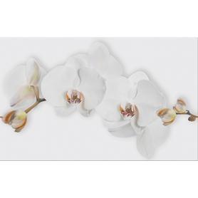 DEKOR  MARISOL WHITE INSERTO FLOWER 25X40