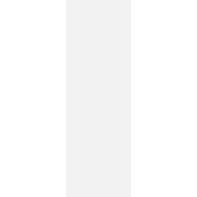 SHINY LINES BIANCO SCIANA REKT. 29,8X89,8 G1 (1.070)