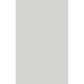 ŚCIANA MELBY GRYS 25X40 G1 (1.30)