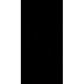 ŚCIANA SYNERGY NERO 30X60 G1 (1,44)