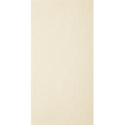 GRES SZKLIWIONY ARKESIA BIANCO REKT. MAT. 29,8X59,8 (1,43)
