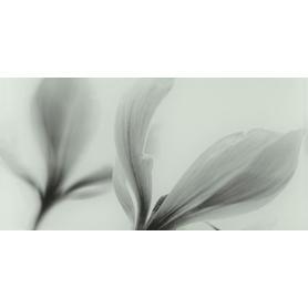 DEKOR SZKLANY JOY FLOWER 22,3X44,8 GAT.1