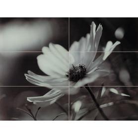 OBRAZ ŚCIENNY SZKLANY 6-ELEMENTOWY JOY FLOWER 89,8X67,3 GAT.1